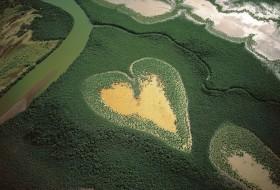 Photo Coeur Yann Arthus-Bertrand : Mangrove du Coeur de Voh