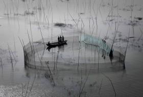 Filet de pêche dans la région de Dhaka, Bangladesh