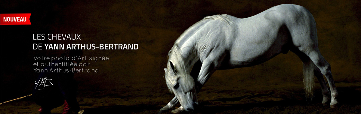 Photo d'art : Chevaux Yann Arthus Bertrand